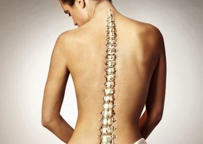 Rücken mit visualisierter Wirbelsäule